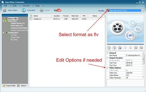 Converting video to flv format - edit options