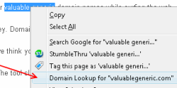 Domain name search option on Firefox