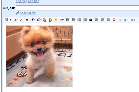 Insert images into Gmail email