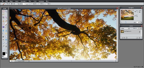 Free online image editor for digital photos